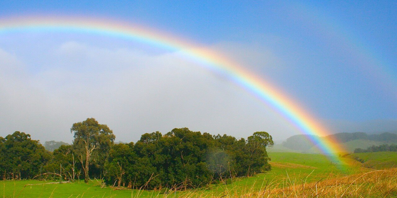 Pic of a rainbow over a field